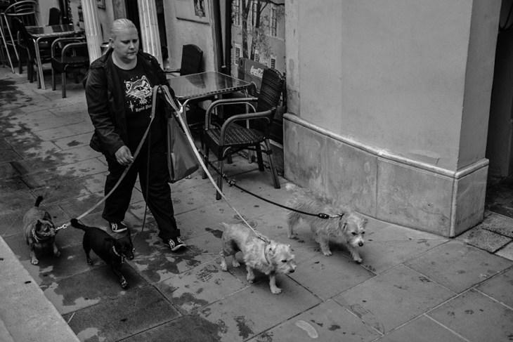 Włochy, Triest / Italy - Trieste - streetphoto
