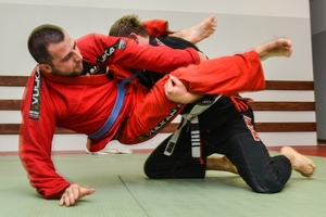 cover_martial_arts