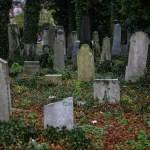 Dwa stare cmentarze: ewangelicki iżydowski, jedna historia