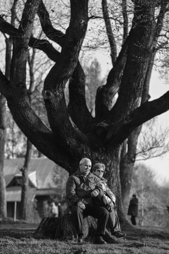 Pielgrzymi pod drzewem