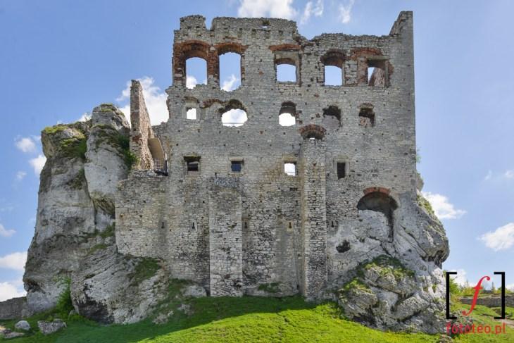 Zamek wOgrodziencu