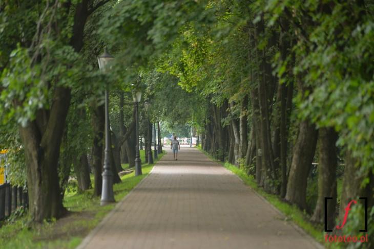 Park w Goczałkowicach-Zdroju