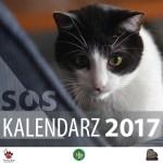 Kalendarz 2017 z fotografiami zwierząt