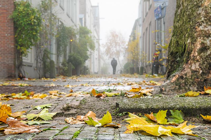 Herfst, Kraanstraat