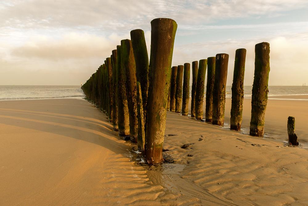 Strandhoofd bij Nieuwesluis