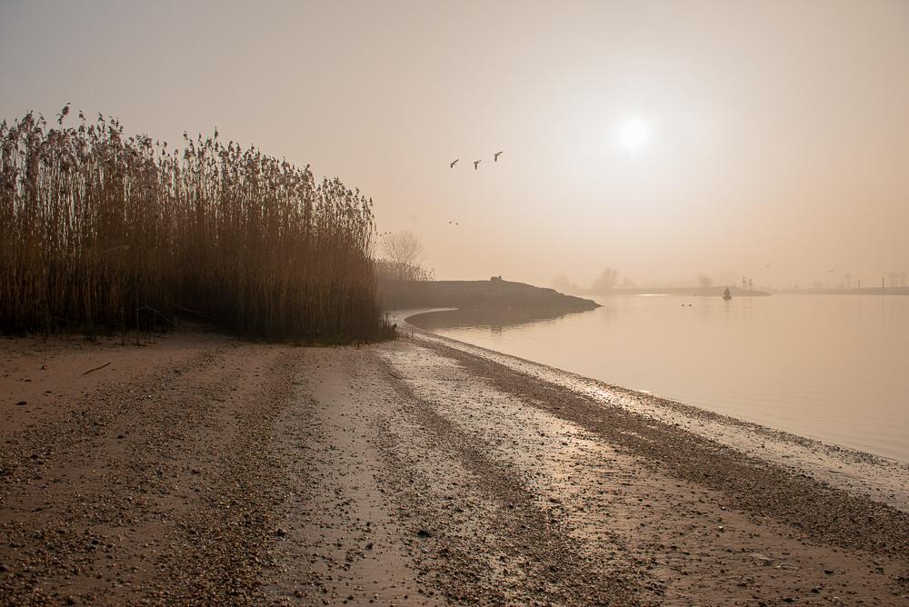 Winterlandschap Heulse Waard