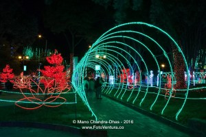 Bogota, Colombia - Christmas lights on Plaza Usaquen