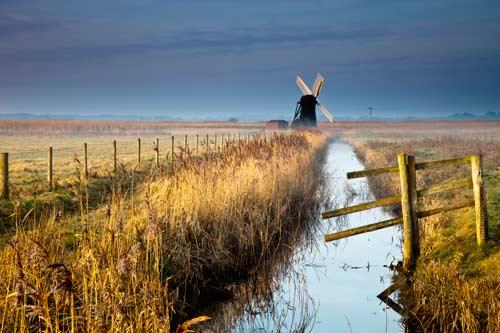herringfleet windmill art print