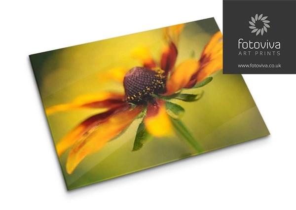 floral print on acrylic art sheet