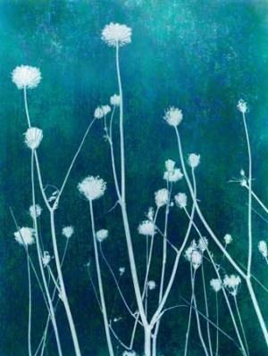 Ice Grass