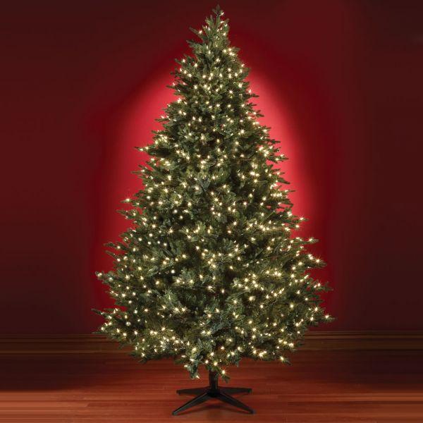 Acquista online gli alberi di natale e le decorazioni natalizie. Come Scegliere Un Albero Di Natale Ecocompatibile