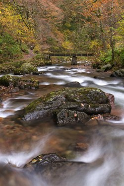 East Lyn River at Watersmeet, Exmoor, Devon, England. Autumn (November) 2013. © Adam Burton