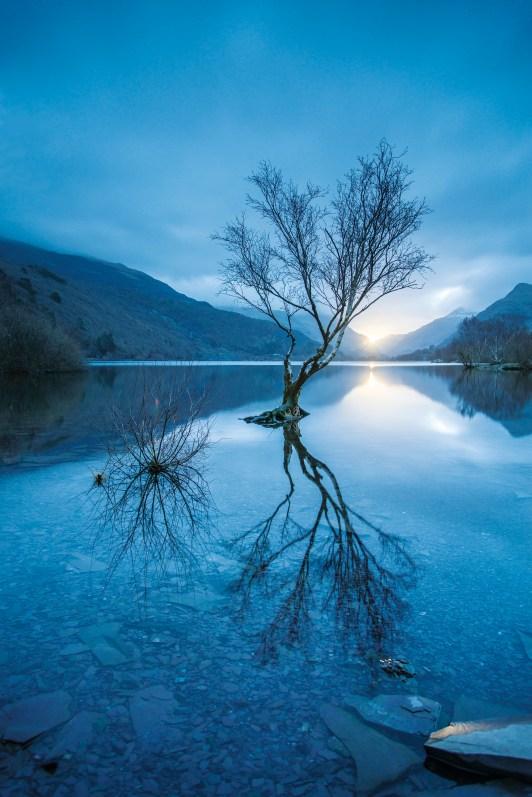 Lone tree on Llyn Padarn at sunrise. Nikon D800, 16-35 at 24mm, 15sec @ f/4, ISO 100, tripod, Big Stopper. © Simon Kitchin