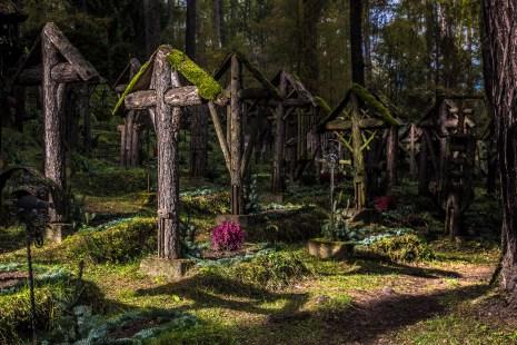 ©James Rushforth The sun illuminates a grave. Nikon D810, 24- 70mm at 48mm, ISO 100, 1/160s at f/6.3, September.