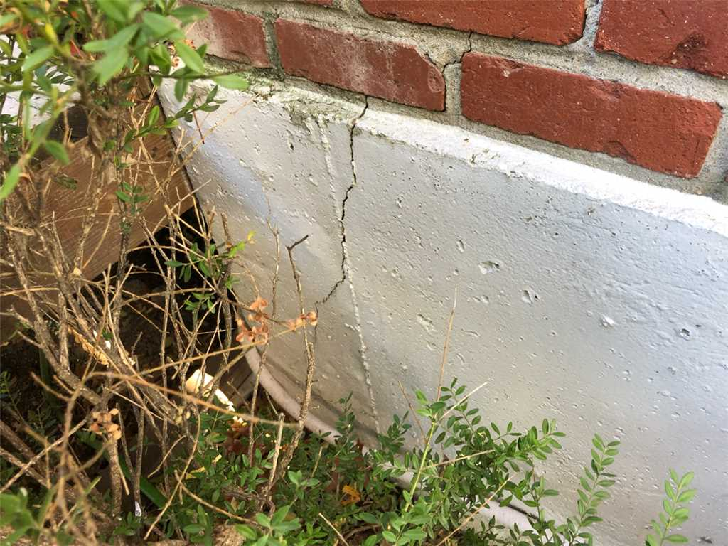foundation cracks and pest infestations