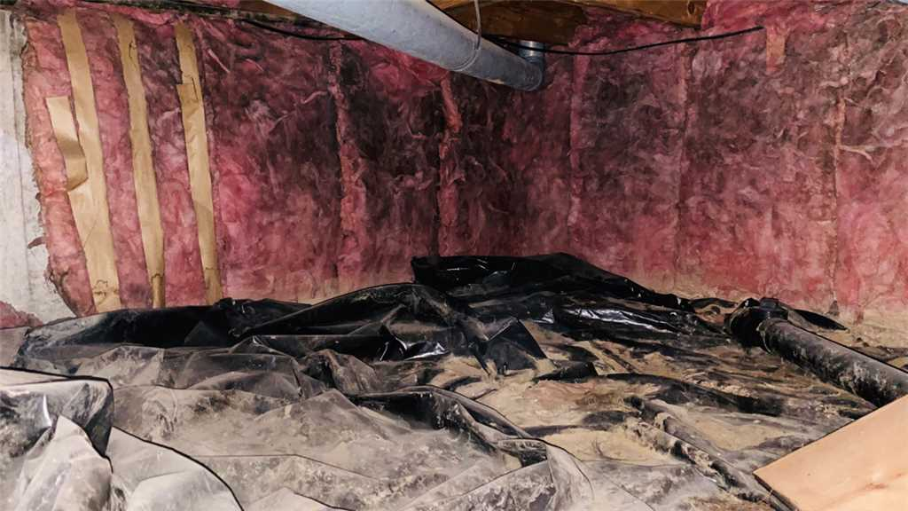 check your crawl space insulation