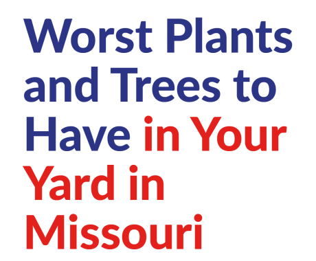 Worst Plants and Trees to Have in Your Yard in Missouri