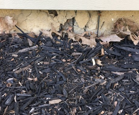 Mulch Vs. Pebbles: Which is a Better Landscaping Option?