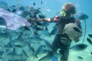 Enjoy diving at Prickly Pear Cays