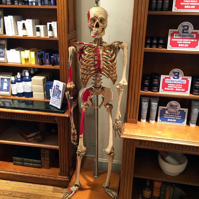 kiehls-store-new-york-skeleton