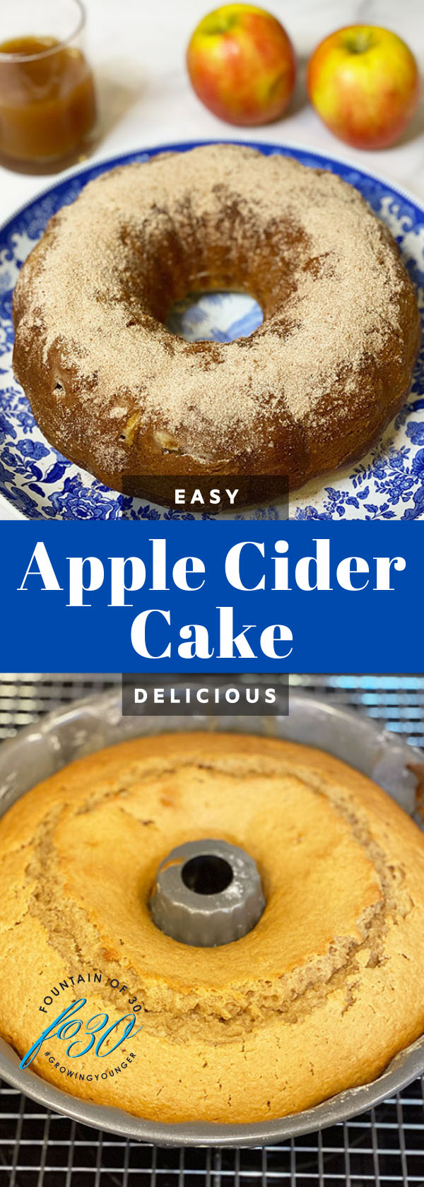 apple cider cake fountainof30