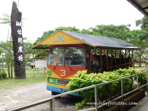 kluang_UK_Farm_mini_bus.jpg