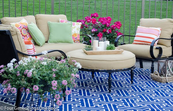 patio black iron furniture with blue geometric rug, potted pink rose bush and annuals
