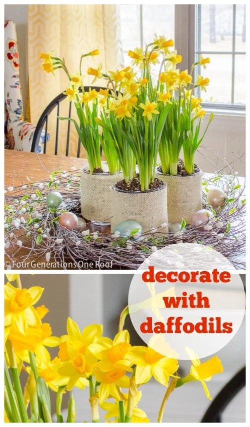 decorate with daffodils centerpiece