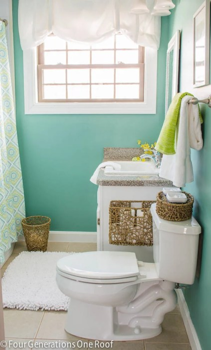 Composed by Sherwin-Williams - bathroom paint color