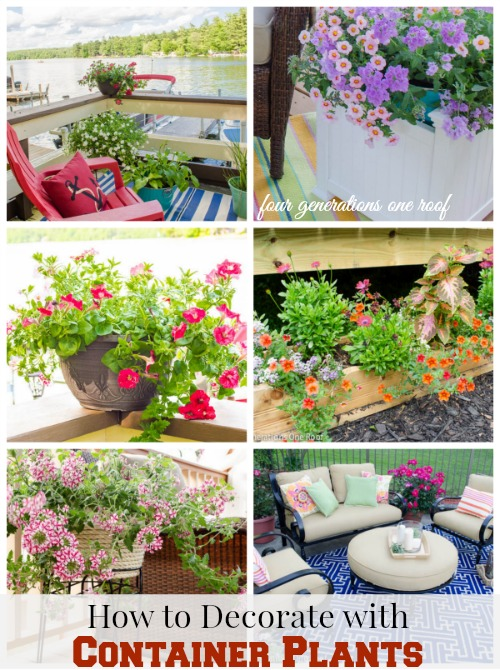 how to decorate with container plants