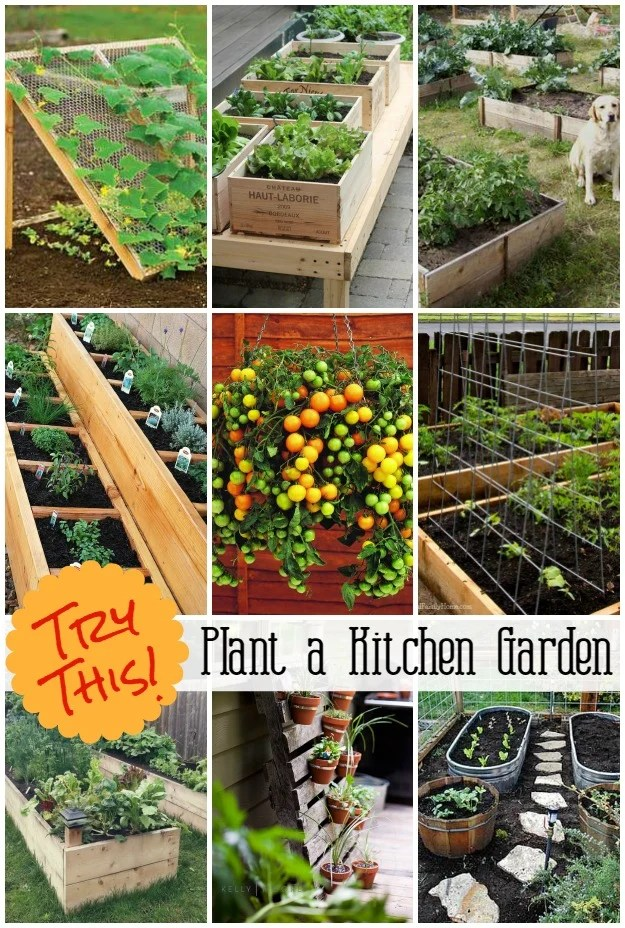 Grow a Vegetable Garden in containers - Kitchen-Garden-Ideas