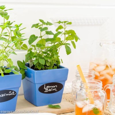DIY Herb Planter {cobalt blue + tea}