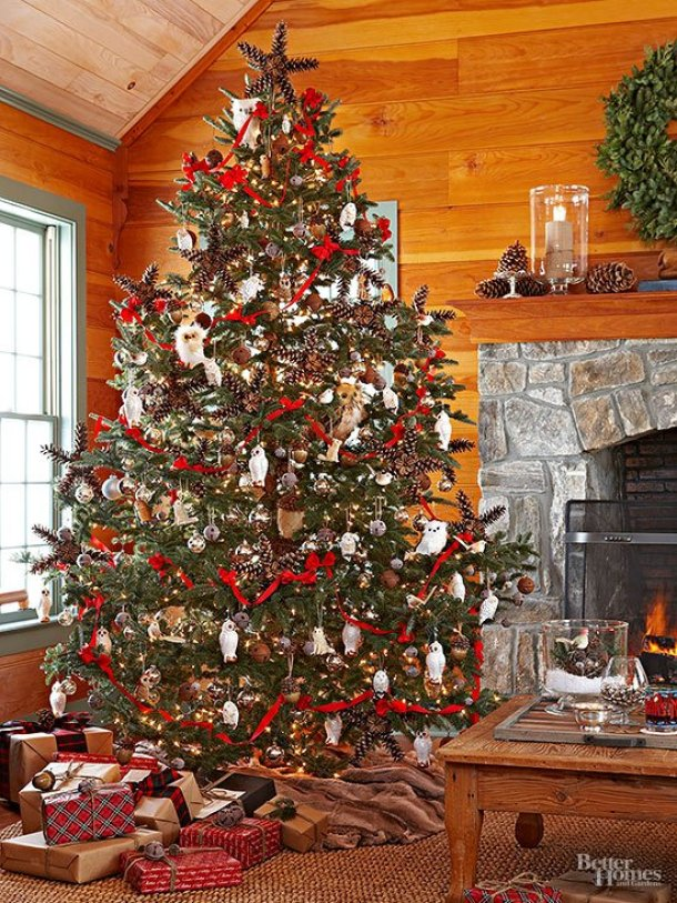 traditional-rustic-tree
