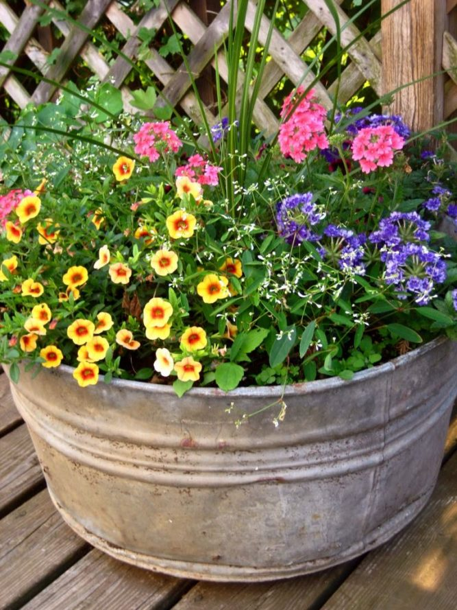 steel tub filled with colorful annuals