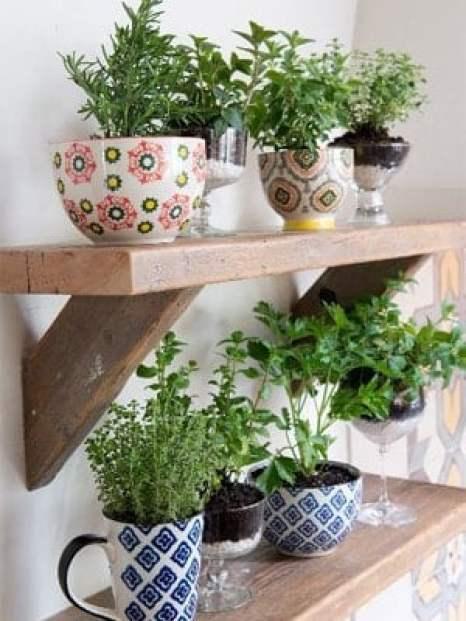 Tea Cup Herb Garden on wood shelf