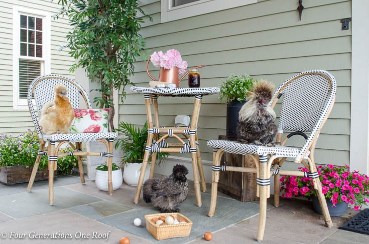 Sophisticated Farmhouse Breeze Way with Chickens