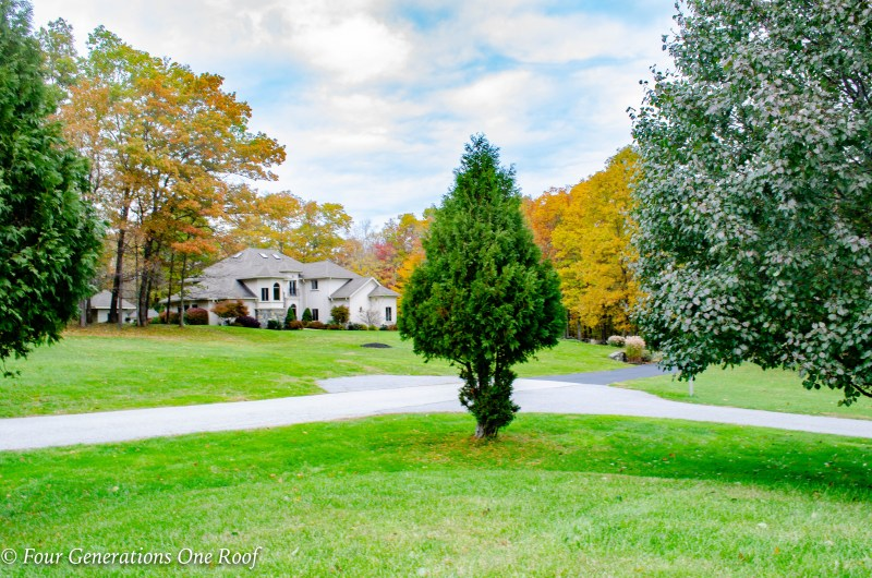 New England fall landscape, leaves turning color, green grass, mediterranean home