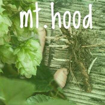 Mount Hood Hop 2018 Rhizome