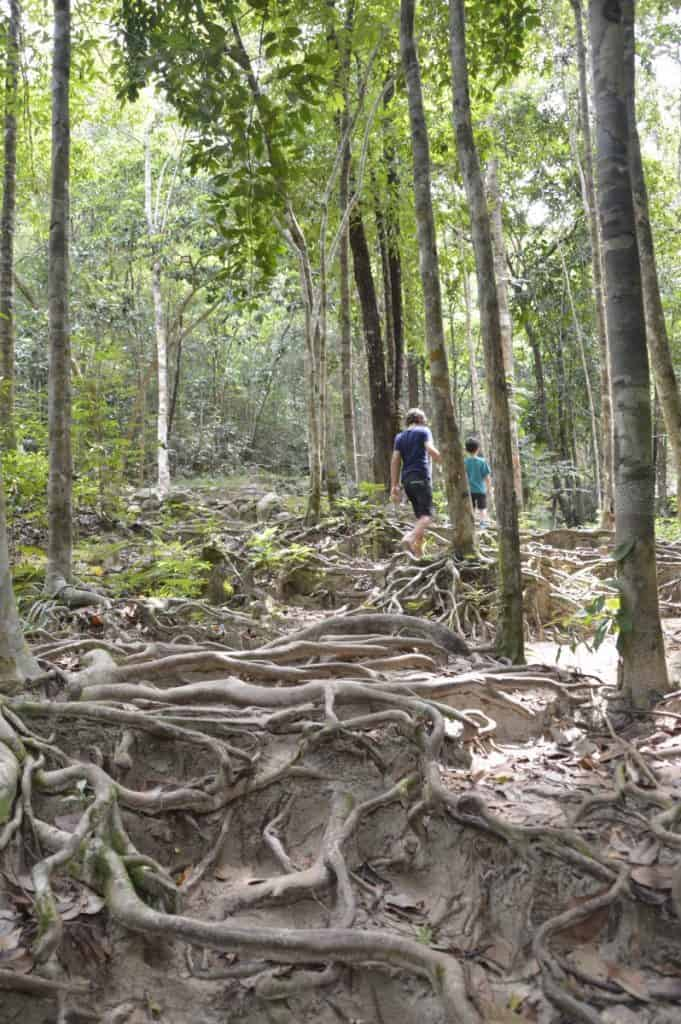 if you wonder what to do with kids on Koh Phangan, check out the Phaeng Waterfalls! The trek is suitable for older kids - with a bit of luck you even see monkeys!
