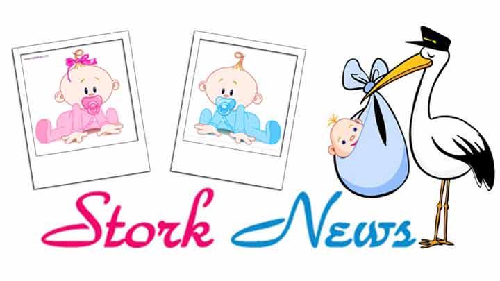 Stork-News-720x405_1523045711156.jpg