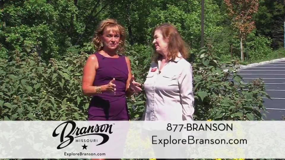 Branson Chamber of Commerce - Fall 2018 (091918)
