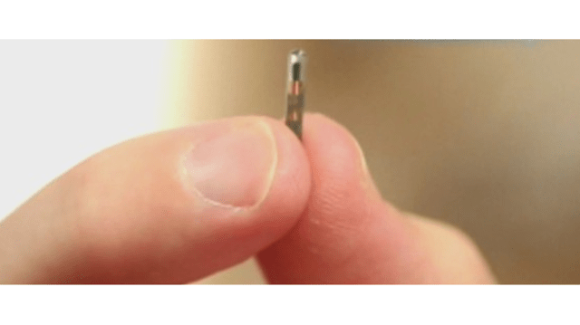 microchipping_1547829850438_67731070_ver1.0_640_360_1547831675400.PNG