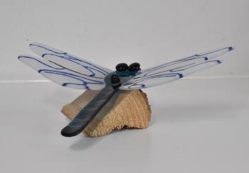 libelle glas-in-lood