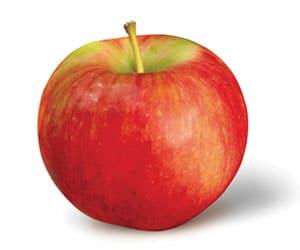 Apple-Zestar