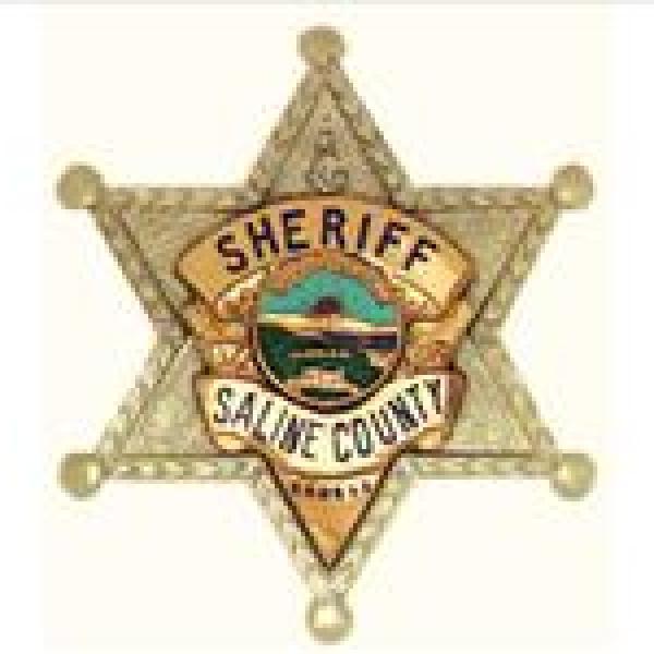 Saline County Sheriff Badge_-6073068215055268212