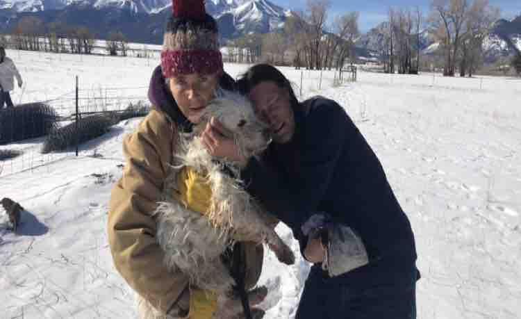 Photo courtesy Help Karilynn Monika w Prince's Rescue Expenses GoFundMe.