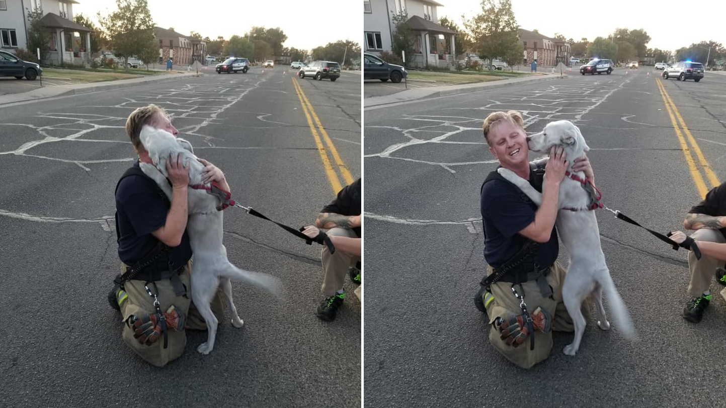 The Pueblo Fire Department shared these photos of a dog thanking a firefighter after being rescued Monday.