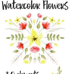 free watercolor flowers graphics red yellow fox hazel [ 710 x 1420 Pixel ]