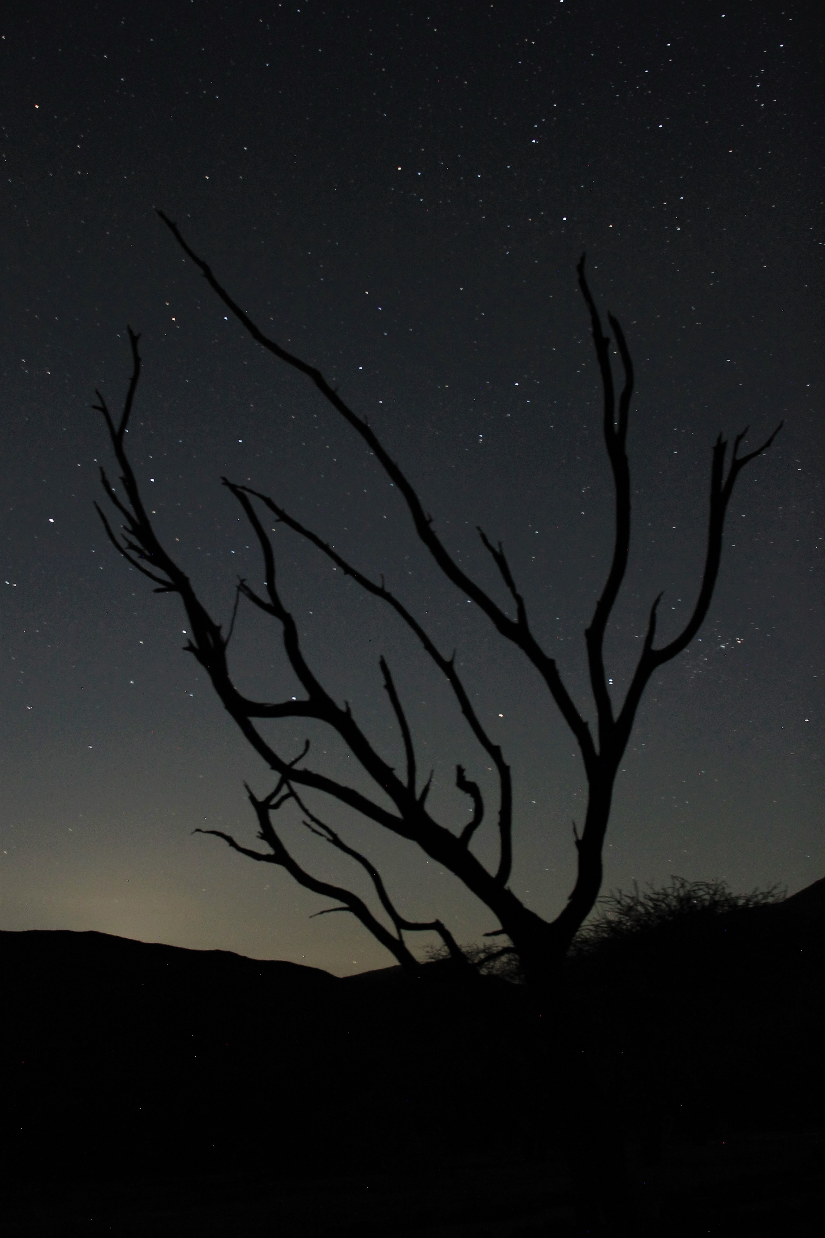 Namibian Night Sky Photography Stars Nature