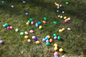 2016-easter-egg-hunt-1071